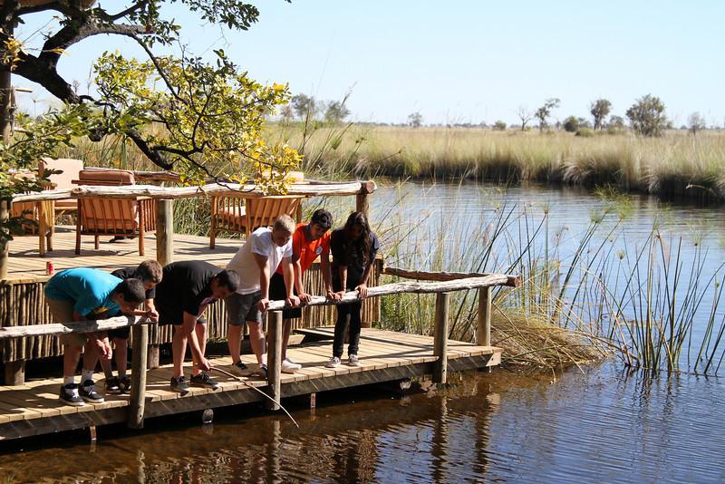 """Fishing"" on the Okavango Delta"