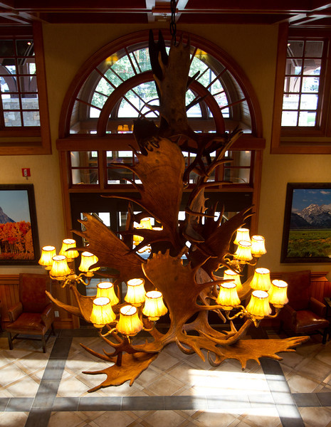 This moose antler chandelier was in the lobby of Wyoming Inn in Jackson, WY..