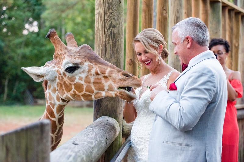 2017-09-02 - Wedding - Doreen and Brad 6188.jpg