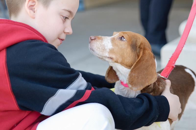 20110312 PetSmart Adoption Event-58.jpg