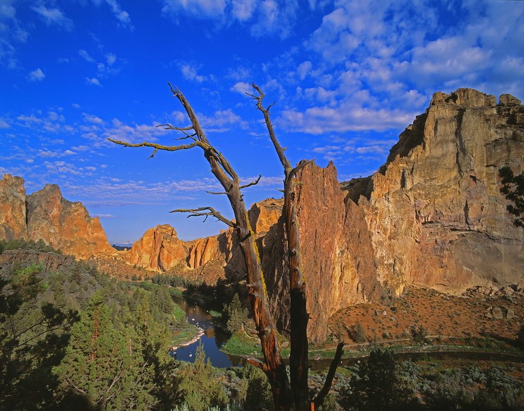 Smith Rock with snag.jpg