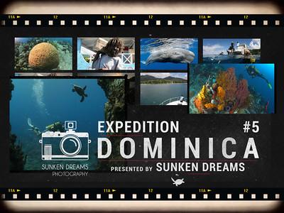 SDSDA Ex5 Dominica