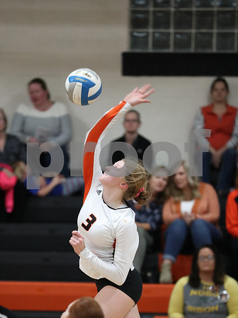 2019 Volleyball action