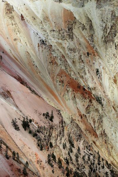 Yellowstone Canyon Wall.jpg