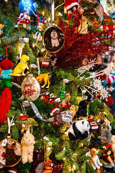 CB Christmas 19-3376.jpg