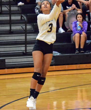 HS Sports - Allen Park at Edsel Ford Volleyball 19