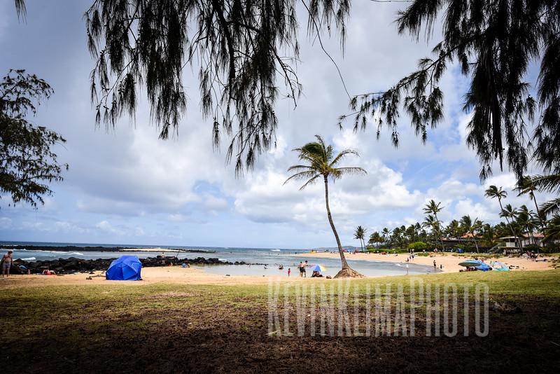 Kauai2017-301.jpg