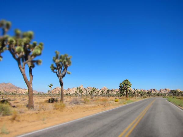 Arizona & California September 2012