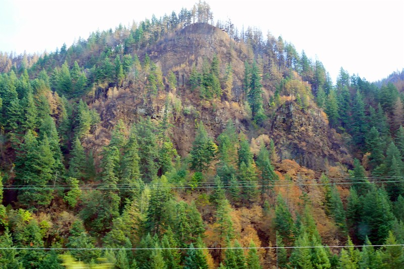 Eagle Creek Fire Damage  242.jpg