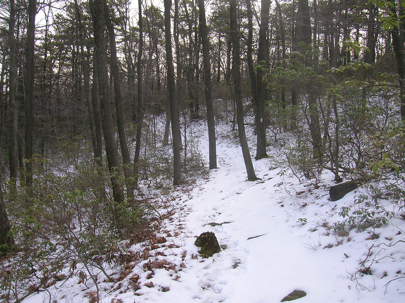 A snow-covered section of trail on Thursday morning