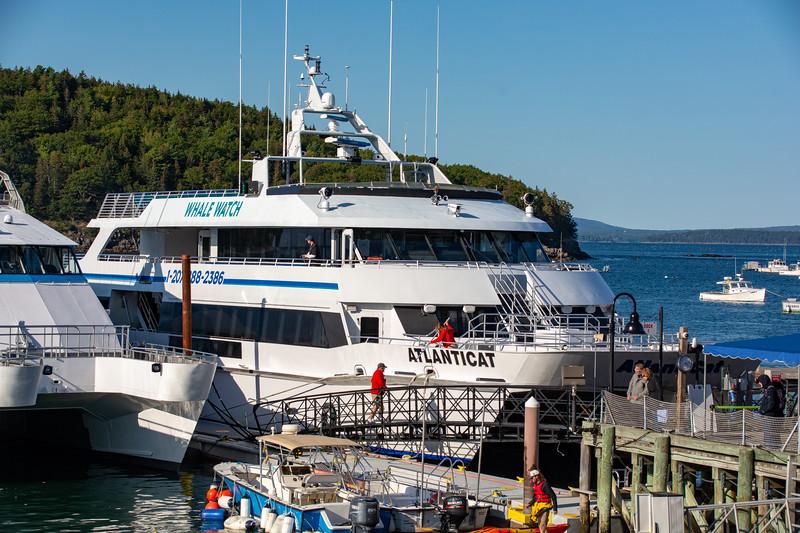 2019 Acadia-34.jpg