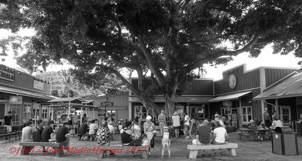Waialua-Haleiwa 9-29-2017