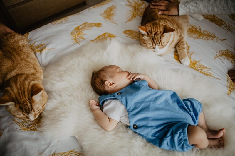 bash-newborn-14.jpg