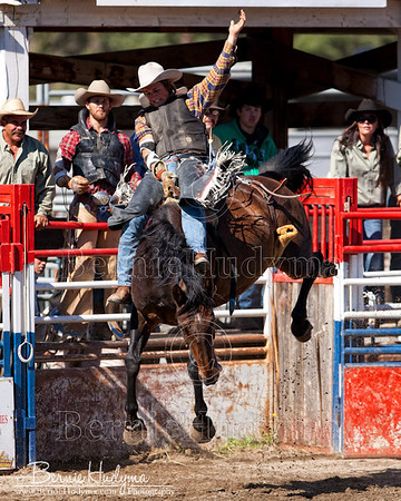 Broncs - Barriere 2011