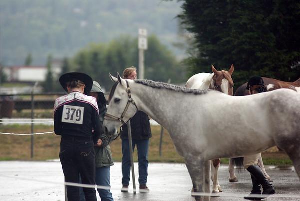 4-H ESF Fair 2008
