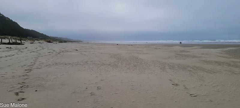 04-21-2021 Part 2 Manzanita Beach-7.jpg