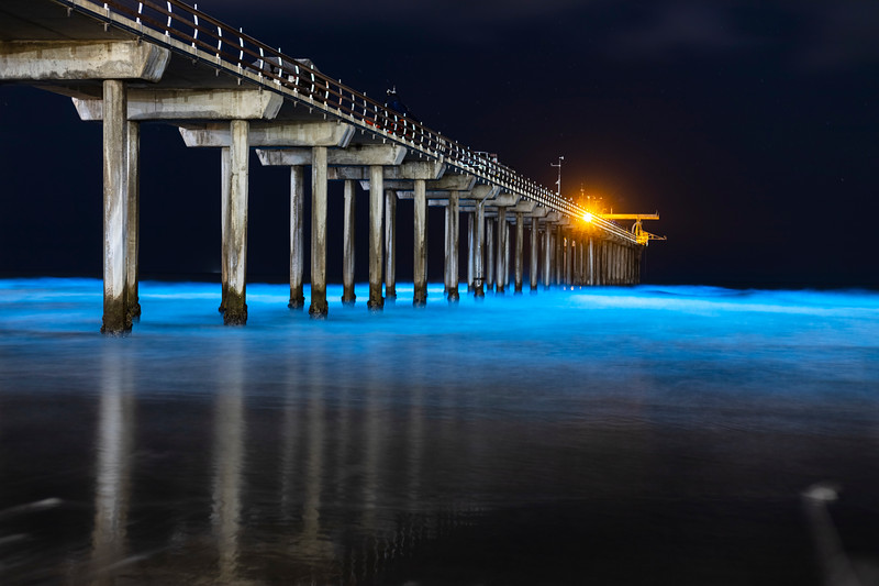 Beautiful Blue Bioluminescence at Scripps Pier