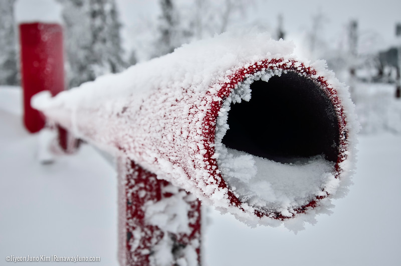 Alaska-2498.jpg
