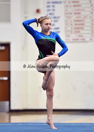 Gymnastics Haslett / Williamston (at Mason)