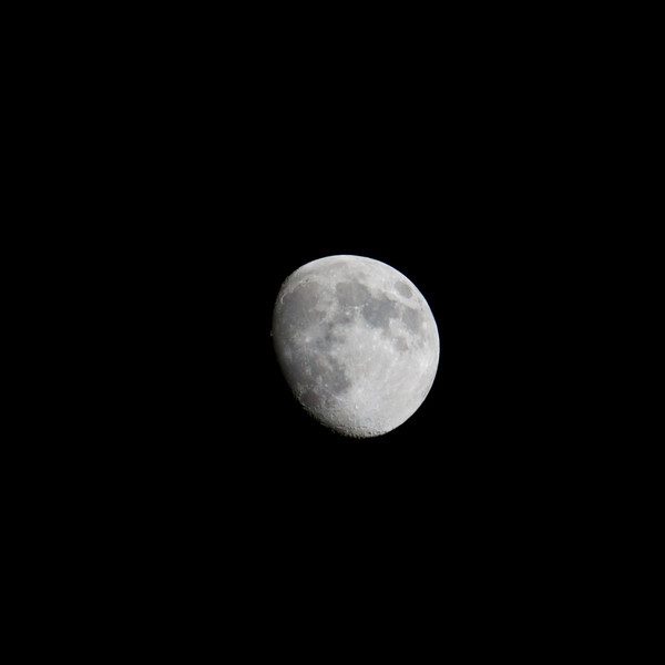 bright moon waxing gibbous