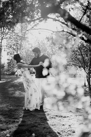 Danai Josh   Engagement Photos