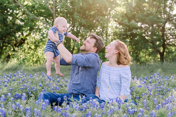 Jenny Haefner Bluebonnet Favorites