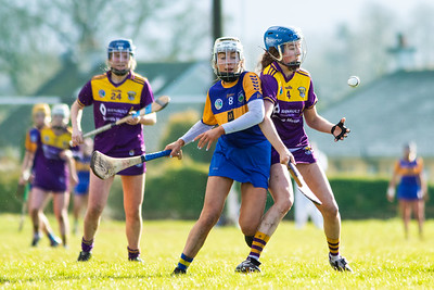 8th March 2020 - Tipperary vs Wexford