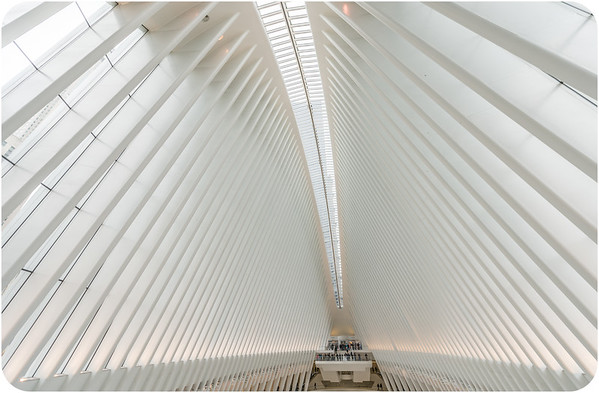 The Oculus/ Transportation Hub