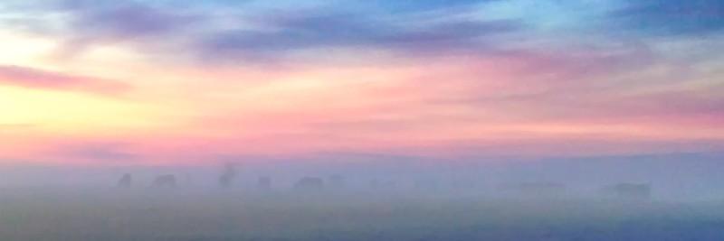 114.Lance Christiansen.1.Twilight Mist.jpg