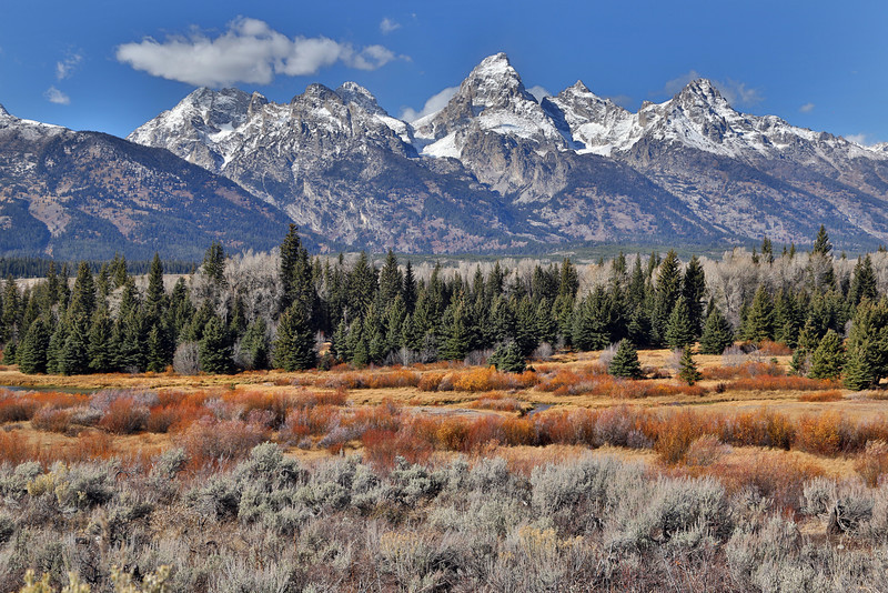 Black Tail Overlook in Grand Teton National Park