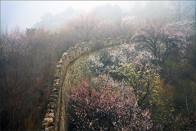 yuanlianguan great wall【spring】