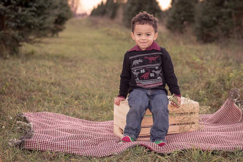 Grand Rapids, MI tree farm child photography