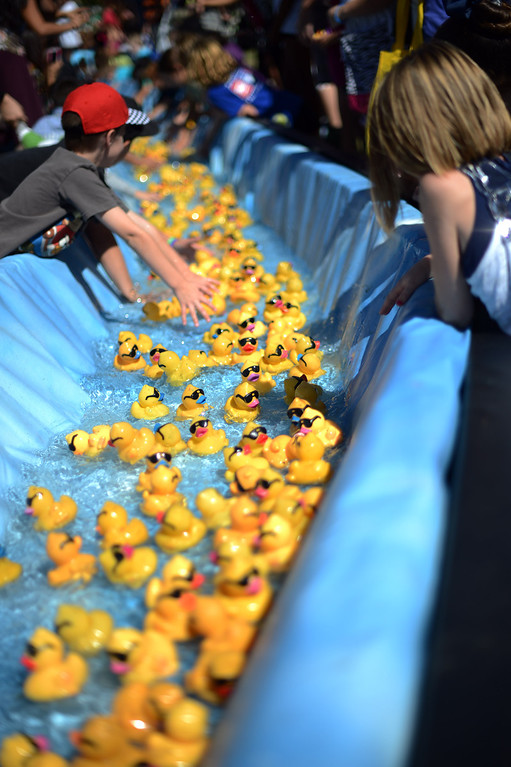 . Rubber ducks make their way to the finish line during the  Samuel Dixon Family Health Centers\' 11th annual Rubber Ducky Regatta at Bridgeport Park in Santa Clarita Saturday, October 5, 2013.  The event raises money for charity to help uninsured and underinsured patient care. (Photo by Hans Gutknecht/Los Angeles Daily News)