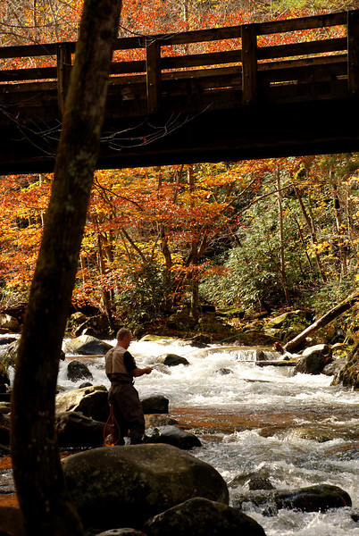 Smoky Mountains - Tremont (Flyfishing)