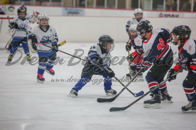 Blizzard Hockey 111719 7752.jpg