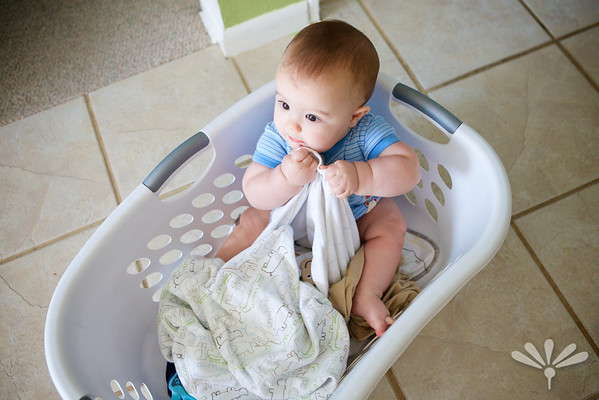 Laundry helper- Luc