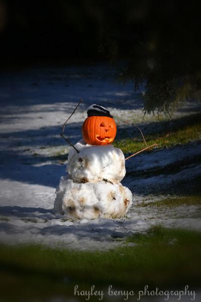 snowfallman1.jpg