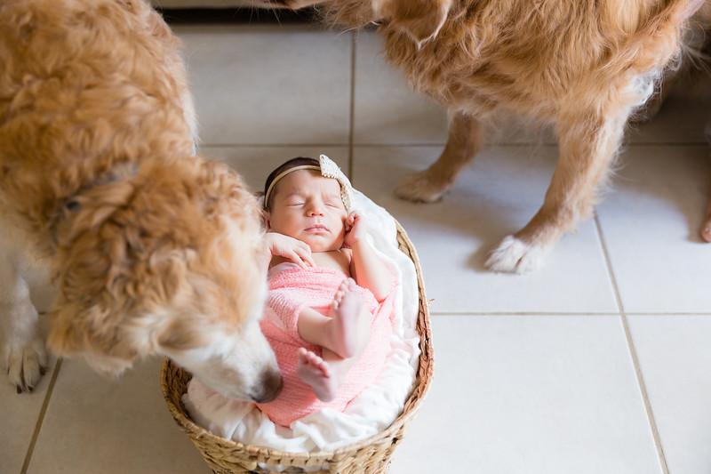 Mila Newborn-158.jpg