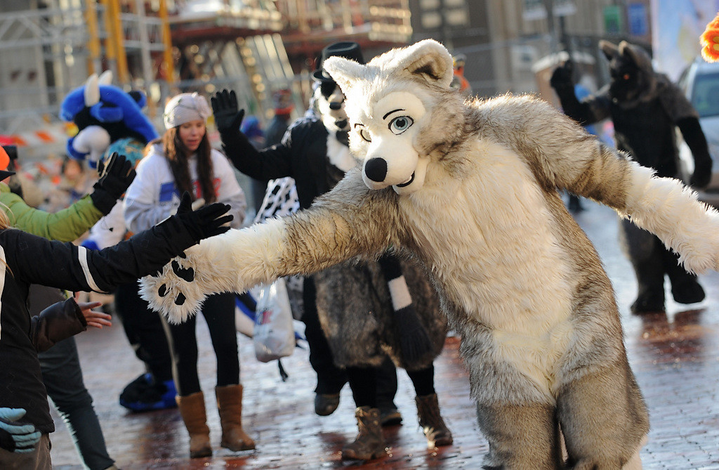 . A wolf from Minnesota Fur greets parade-goers on Fifth Street at the Winter Carnival Grande Day Parade in St. Paul, Saturday January 25, 2014. (Pioneer Press: Jean Pieri)