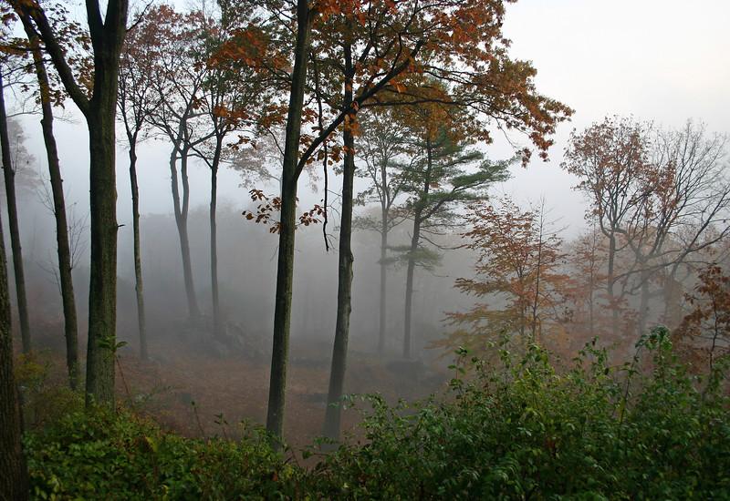 More mist