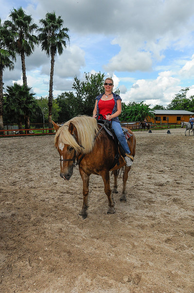 Rosaire's Riding Academy