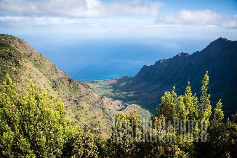 Kauai2017-045.jpg