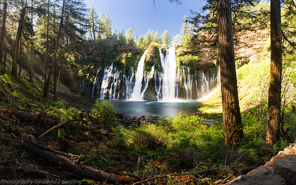 McArthur-Burney Falls Memorial State Park (CA) Collection