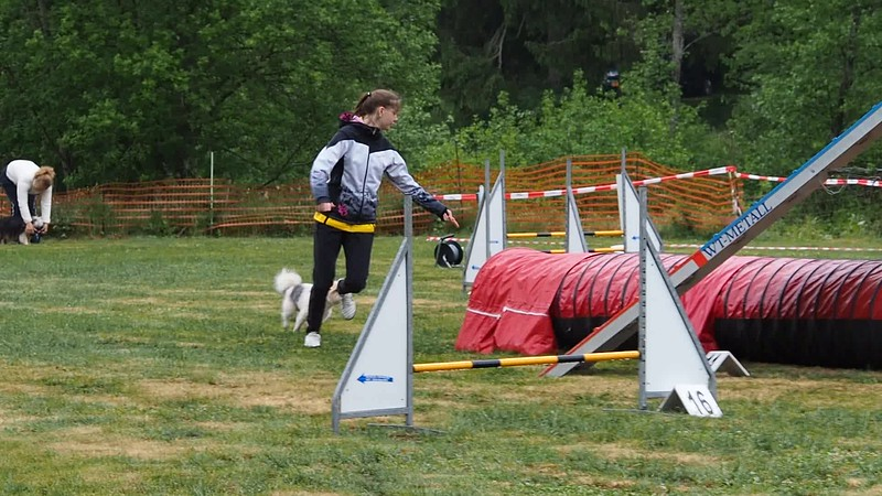Agility Lee Biver