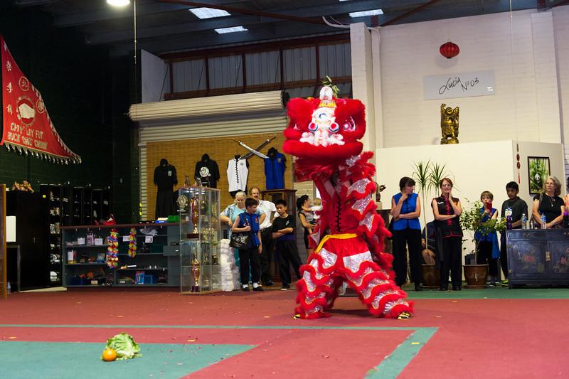 CNY 2014-41.jpg