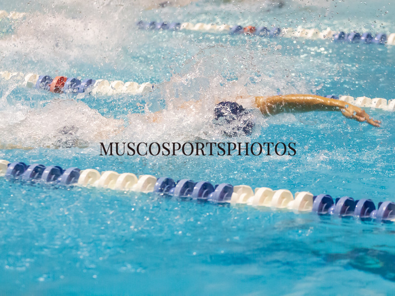 Swimming-diving vs Seton Hall_208.jpg