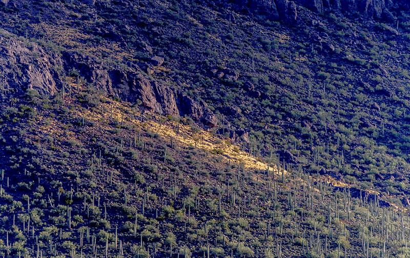 Panther Peak Work Site  1-1-19