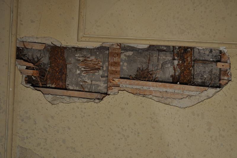 In den Fehlstellen der Gipsdecke ist die Konstruktion einsehbar. Zwischen den Ost-West verlaufenden Eisenträgern sind Mörtelflächen mit abdrücken einer Holzschalung. In einer Fehlstelle dieser Mörtelflächen ist Schilfrohr sichtbar. Darunter befindet siche eine Holzlattung, welche den Putz trägt. DSC_0025