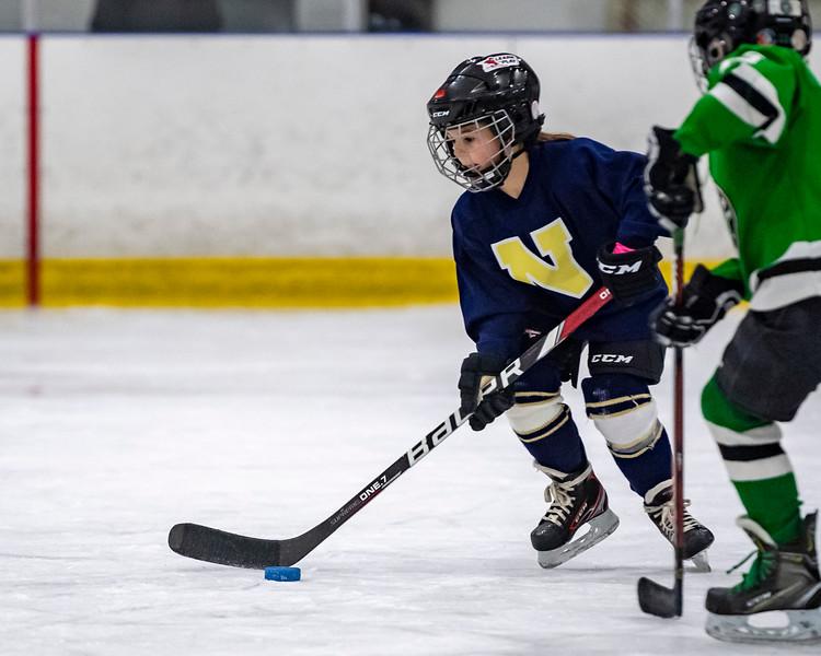 2019-02-03-Ryan-Naughton-Hockey-54.jpg