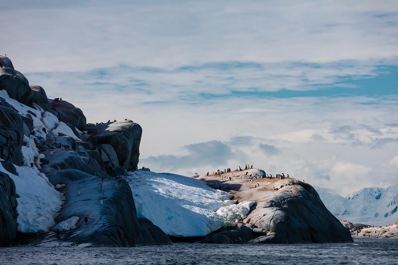_MG_7370_20170122_Antarctica.jpg